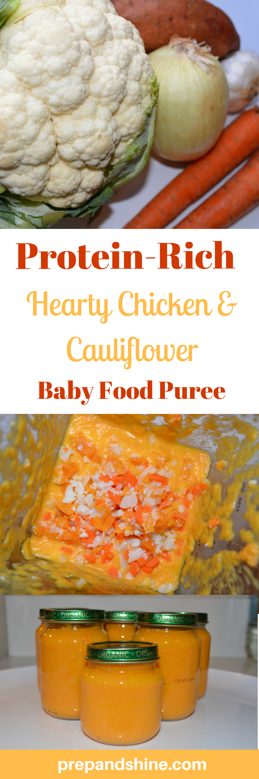 Homemade baby food recipe hearty chicken cauliflower puree prep homemade baby food hearty chicken and cauliflower puree 1 forumfinder Image collections