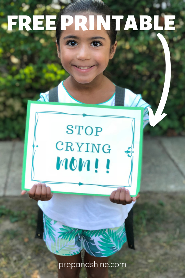This is an image of Lively Free Printable First Day of School Signs 2020-2020
